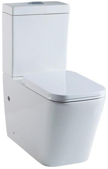 Чаша напольного унитаза с сиденьем микролифт Delice NICOLE COMPACT 1/2