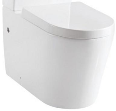 Чаша напольного унитаза с сиденьем микролифт Delice LORRAINE COMPACT 1/2