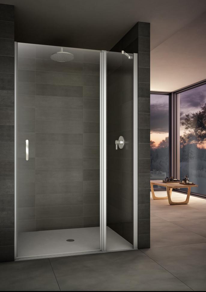 Душевая дверь распашная 110 см прозрачное стекло Provex Look 2006LN05GL 810 141 524 018 средняя