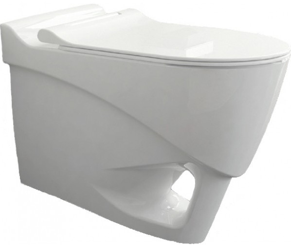 Подвесной безободковый унитаз с функцией биде с сиденьем микролифт Bien Organic OGKA052N1VP1W3000 унитаз биде bien pent pnka052n1vp1w3000 подвесной с сиденьем микролифт